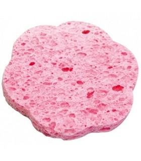 Esponja desmaquillado Celulosa