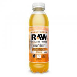 Bebida isotonica Mandarina y mango bio 500ml Raw Organic - Imagen 1