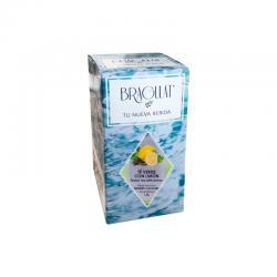 Bebida soluble te verde & limon 15x9g Bragulat - Imagen 1