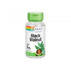 Black Walnut Hull (Nogal Negro) 500mg 100 vegcaps Solaray - Imagen 1
