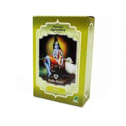Neem tratamiento capilar natural 100g Radhe Shyam - Imagen 1